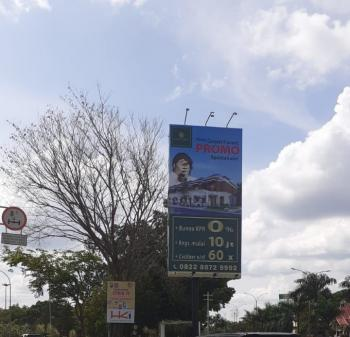 Pohon di Simpang Arifin Ahmad Pekanbaru Mendadak Mati Kering, Ada Reklame Berdiri