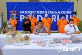 Polda Riau Bongkar Kejahatan Perdagangan Ilegal Hewan Dilindungi