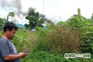 Data Sawit Ilegal, Petir: Gubri